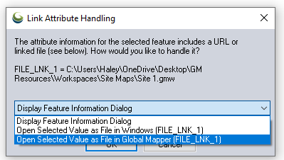 Link Attribute Handling